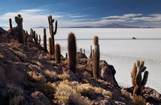 Солончак Уюни - крупнейшая соляная пустыня мира - Лучшие фотографии со всего света