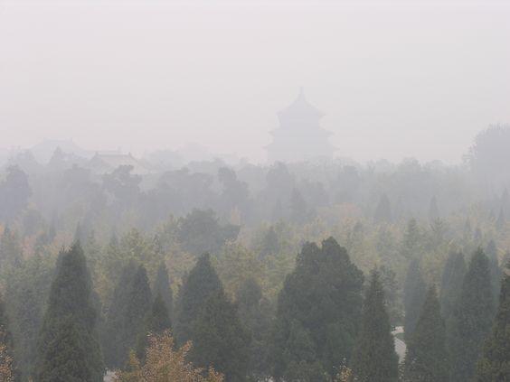Beijing (2011)