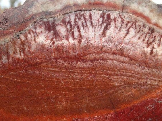 Sangre Flame Agate  slab Cady Mountains 19.4oz jewelery grade!