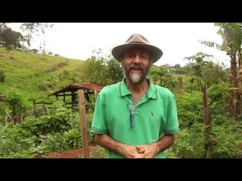 A Horta Do Chico Abelha Explodiu Documentarios