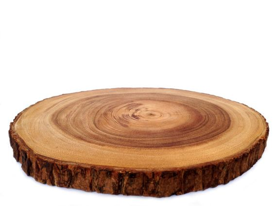 14 inch rustic tree bark wood cutting board wood slice for How to cut wood slices