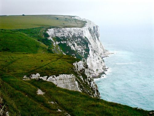"allthingseurope:  ""White Cliffs of Dover, UK (by G B)  ""  The REAL white cliffs of Dover!! Not the photos of Beachy Head, which is in an ENTIRELY DIFFERENT COUNTY, I keep seeing labelled as 'the cliffs of Dover' Sorry for the shouting. It isn't YOUR..."