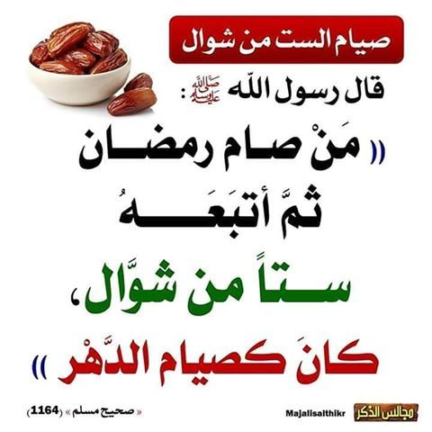 ابو احمد Abu Ahmed 122 Instagram Photos And Videos Good Morning Flowers Islam How Are You Feeling