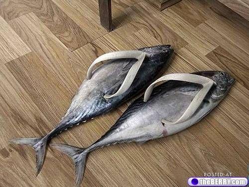 a-crazy-shoes-5.... Now I'm cracking up