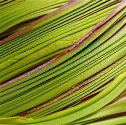 hand-dyed shibori silk