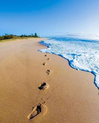Pictures Of Footprints In The Sand