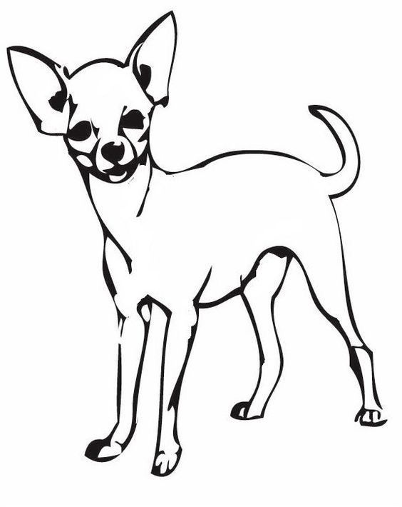 Pin On Pets Coloring Pages