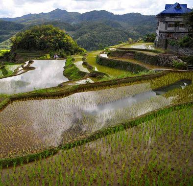 Top things to do in the Philippines