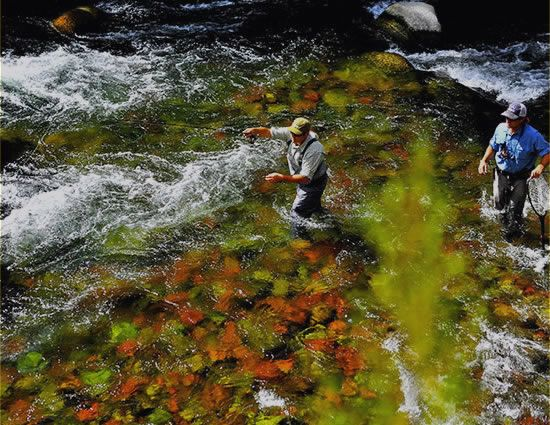 The classic fly rod forum fly fishing photography pics for Roaring river fishing hours