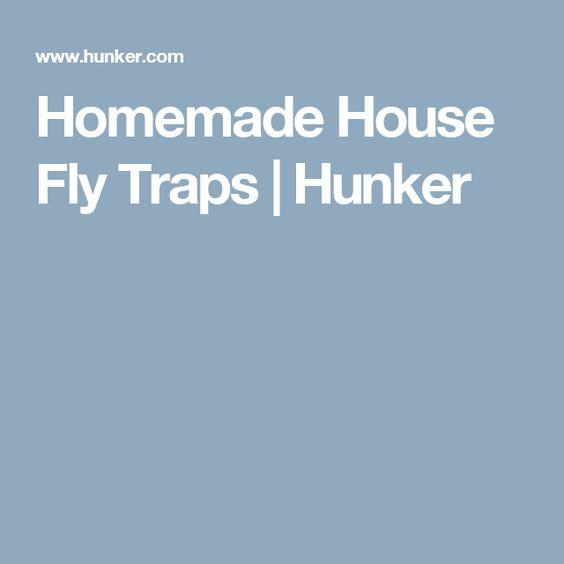 Homemade House Fly Traps | Hunker