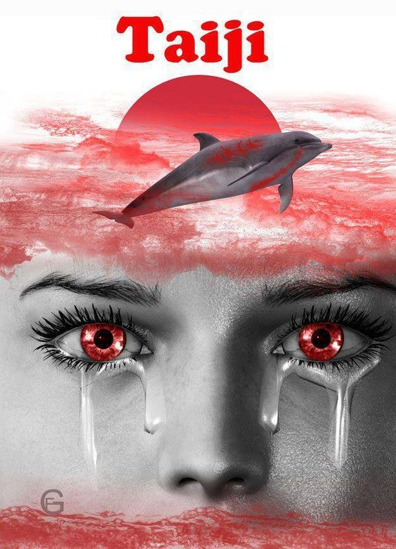 taiji dolphin killing speech The taiji dolphin drive hunts are a brutal process in which wild dolphins are  to  herd large numbers of dolphins to shore, resulting in their capture or death.