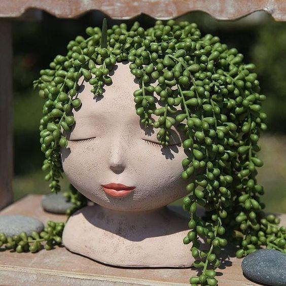 """@suculentasscoloridass on Instagram: """"Linda demais 😍😍 Eu amooo essa suculentas colar de perola 😍 . ... . Amei essa ideia de fazer ela imitar cabelo 👏👏👏. .... . O que vcs acharam…"""""""