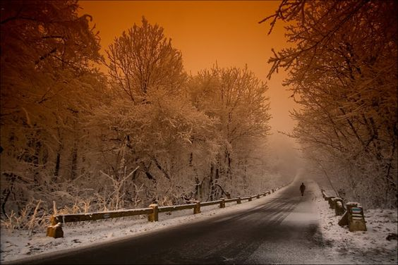 DIVAGAR SOBRE TUDO UM POUCO : A Natureza veste-se de branco