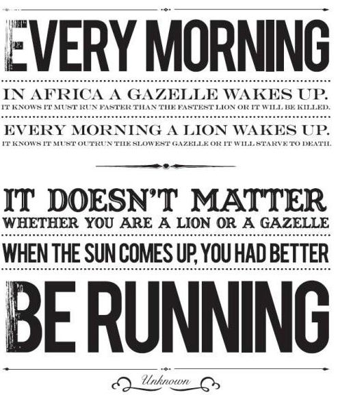 Cross Country Quotes Impressive No Excuses Motivational Quotes To Get You Moving  High School . Inspiration Design