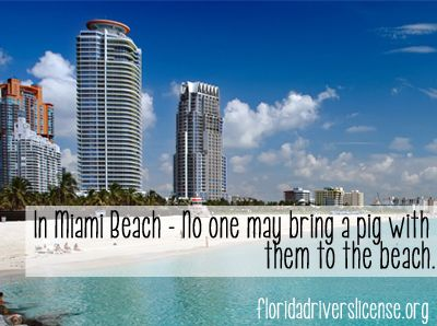Interesting Beach Facts The Best Beaches In World