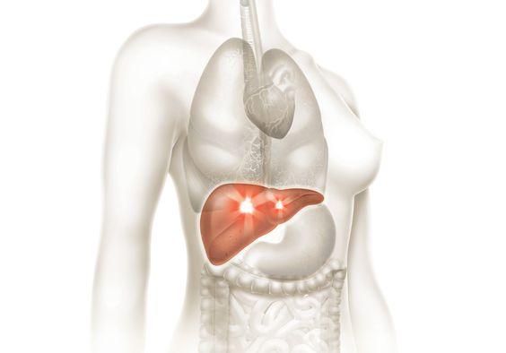 Você sabe como funciona a doação de órgãos?