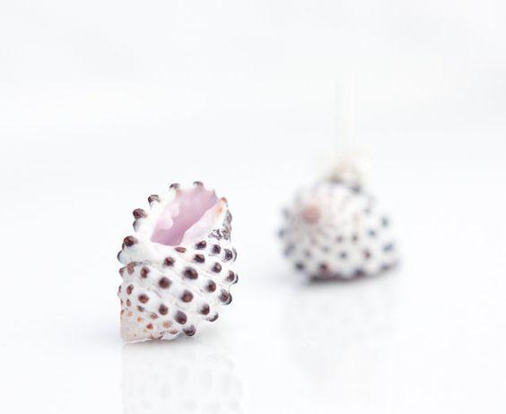 Sea Shell Stud Earrings Post Earrings white beach fashion pastel polka dot eco-friendly nautical travel vacation