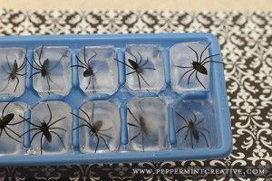 Spinnen in ijsblokjes voor de drankjes van de kinderen