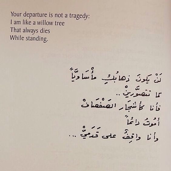 بوستات انجليزى صور بوستات انجليزى مترجمة للغة العربية بفبوف Friends Quotes Best Friend Quotes Arabic Tattoo Quotes