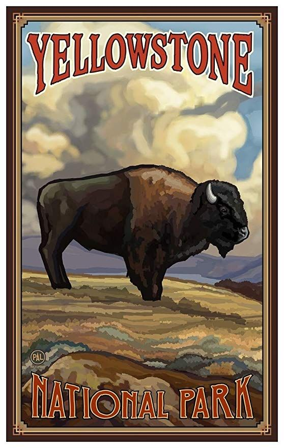 Pin By Amestoy On Usa Vintage Travel Posters Vintage Poster Art National Park Posters