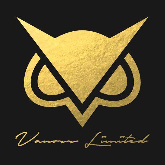 VANOSSGAMING Gold Logo My Favorite Youtubers Pinterest