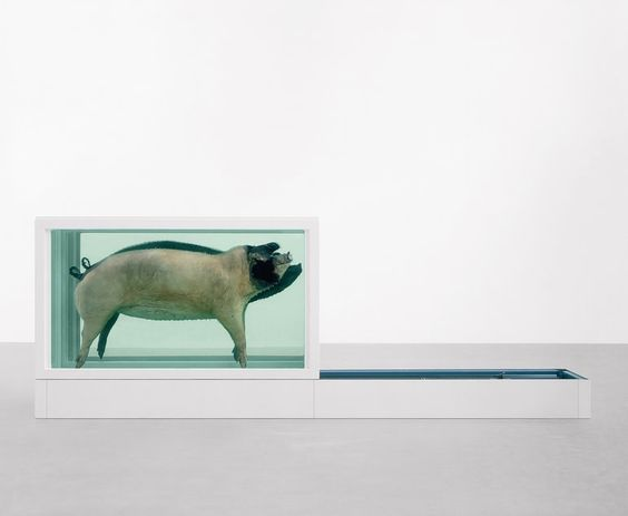 Damien Hirst - This Little Piggy Went to Market, This Little Piggy Stayed at Home, 1996
