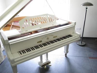 Would love to have a white piano in my house