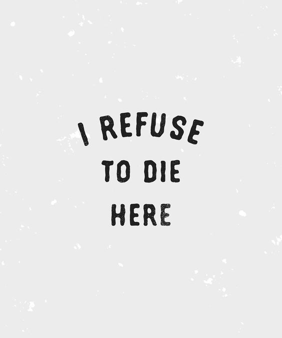 I refuse to die here  got time for commissions plus heaps of pre-made designs available for sale! Get in touch if you're interested :)