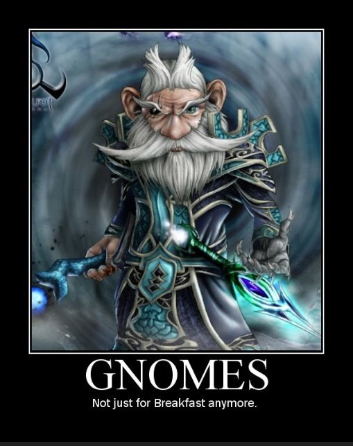 D D   Whisper Gnome Build