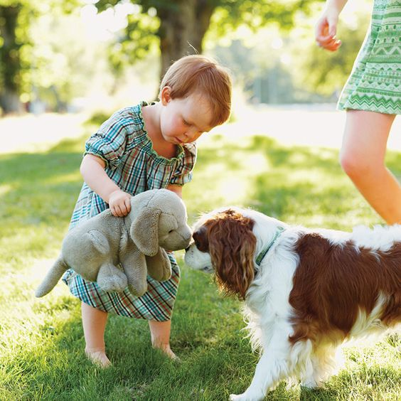 It's hard to avoid running into pooches while you're out. If your child's afraid, here's how to help.