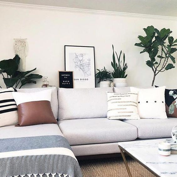 @thepottedjungle takes down-to-earth style to the next level 🌿Tap image to learn more about this modern couch. #hayneedlehome