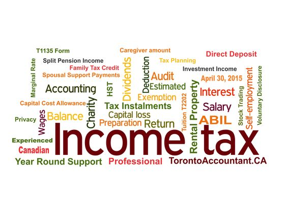 Tax Software Vs Tax Accountant For Toronto Tax Return Http