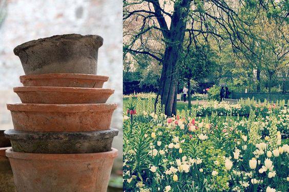 Option for pots for amphitheatre