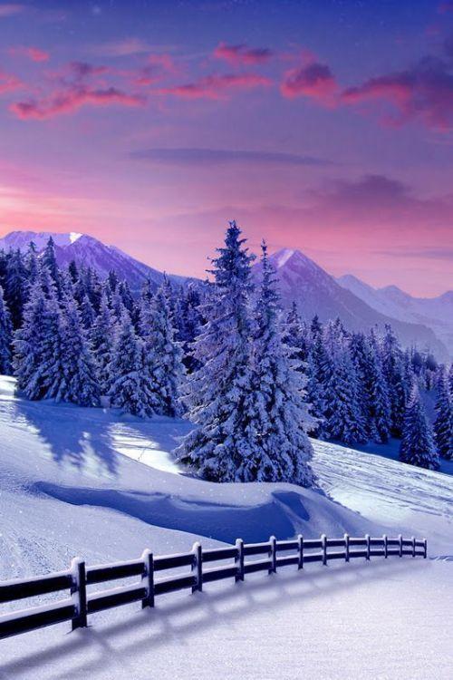 Winter Wonderland Winter Scenery Winter Landscape Winter Pictures