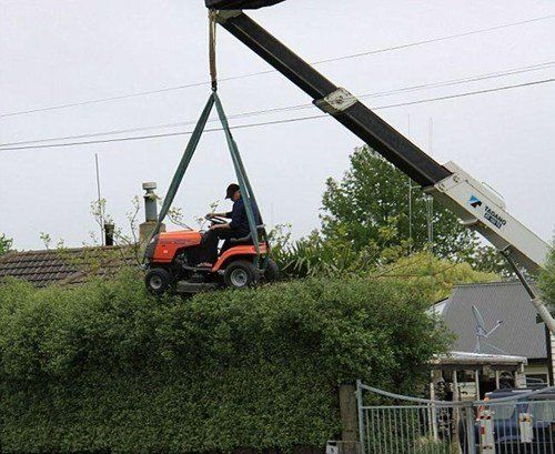 It's the new craze – extreme hedge cutting!