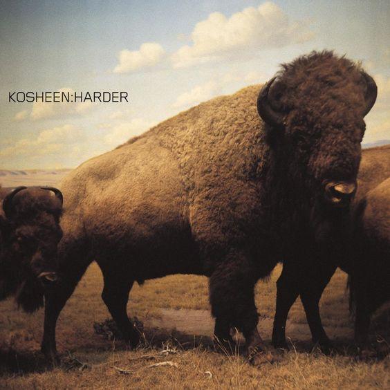 Kosheen – Harder (single cover art)