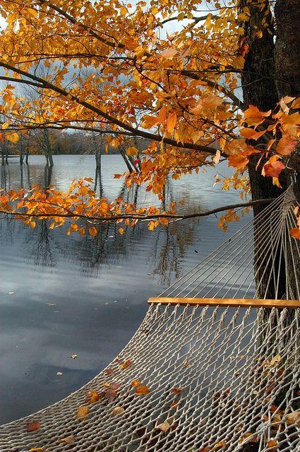 A hammock on an autumn day.: