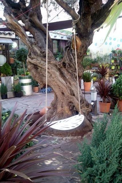 El jardín del ángel en Madrid: El vivero secreto sobre un antiguo cementerio | DolceCity.com