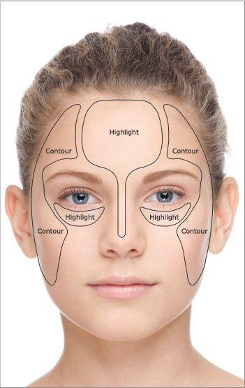 Face Skin Anatomy