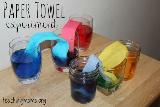 Paper Towel Experiment #2 – Strength Test