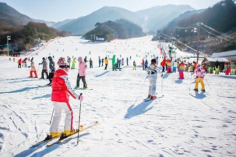 Trượt tuyết ở Muju là một trải nghiệm thú vị với nhiều du khách khi đến đây