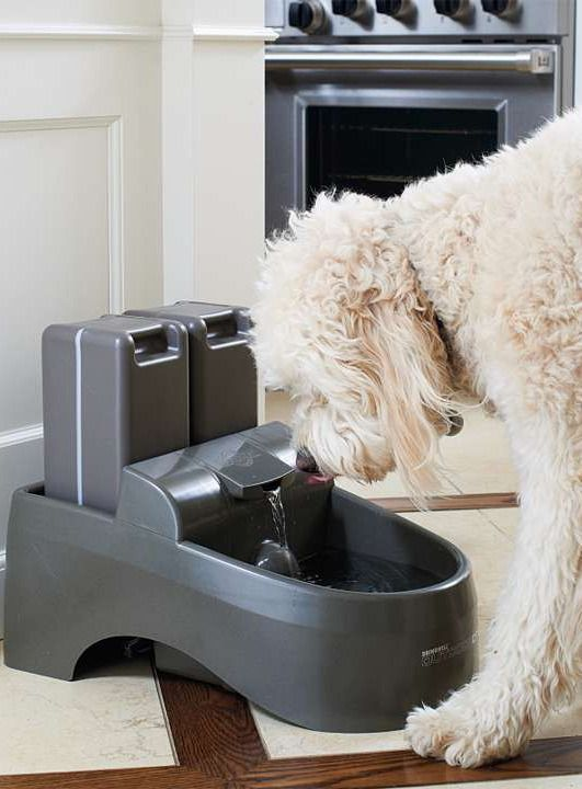 Our deluxe Water Purification Pet Fountain will keep your pets hydrated with a constant flow of charcoal-filtered water.
