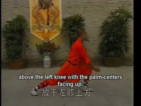 Northern Shaolin Kung Fu Dragon Fist Instructional Video. (This is VERY different from Tien Shan Pai Dragon Fist.)