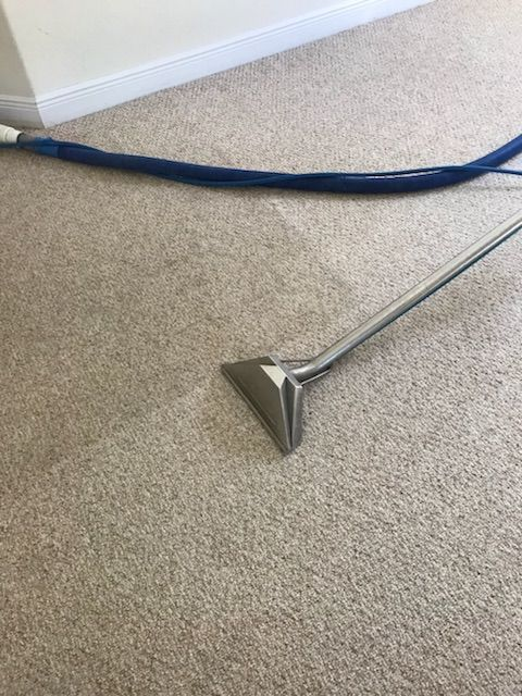 Pin By Chris Hilderbrand On Carpet Cleaning Special For Titusville Fl Call 321 593 0779 Www Broomhildy Com Cleaning Titusville