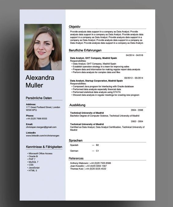Switzerland Swiss German Cv Resume Template Cv Template Word Cv Template Cv Resume Template