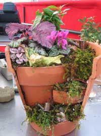 Miniature Garden Broken pot