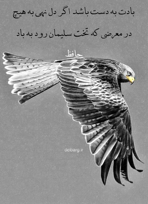 حافظ | Hafez #عارفان_شاعر #mysticpoets