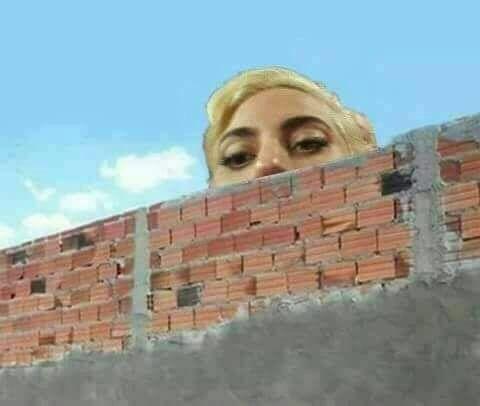 Resultado de imagem para lady gaga meme muro