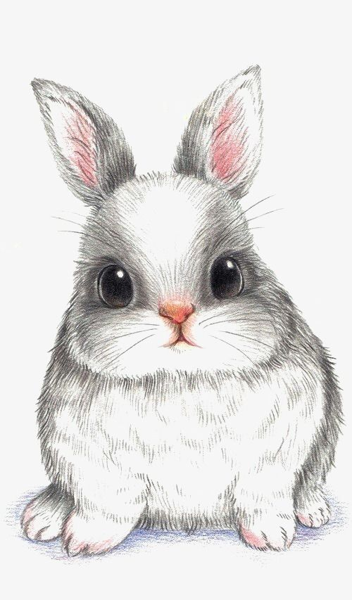 Bunny Png Pinterest Clip Art And Ladylony Cute Easter Bunny Clipart Is A Free Transparent Png Image Search And F Cute Easter Bunny Bunny Art Bunny Artwork