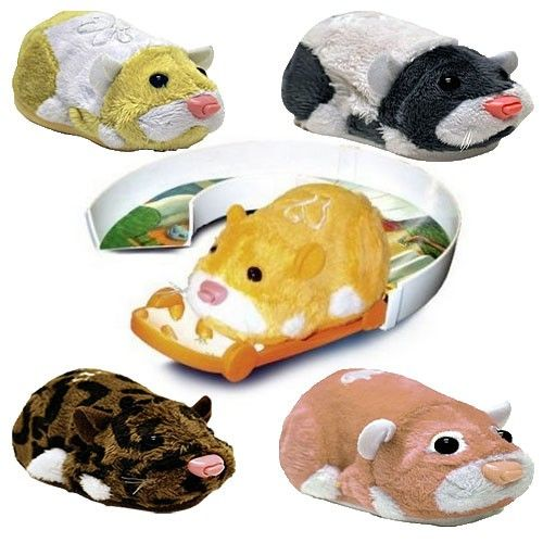 Zhu Zhu Pets Hamster Sets Yahoo Search Results Yahoo Image Search Results With Images Hamster Pets Dinosaur Stuffed Animal